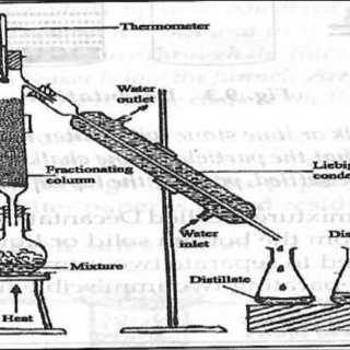 (PDF) BASIC SCIENCE for UPPER BASIC EDUCATION. An