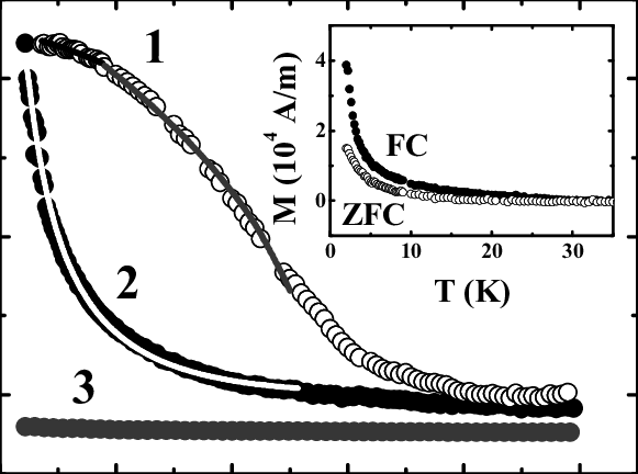 Temperature dependencies of the magnetization of the