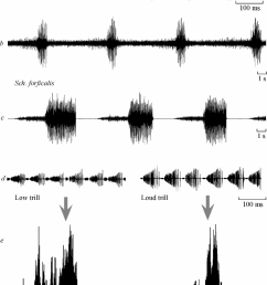oscillorams a d and frequency spectra e of calling signals in katydids of the png [ 757 x 1050 Pixel ]
