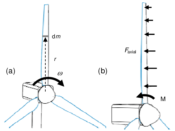 Forces on a wind turbine rotor. (a) Centrifugal force on