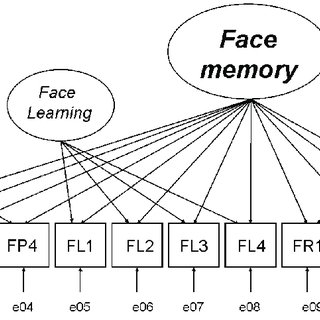 2. Bruce and Young's (1986) functional model of face
