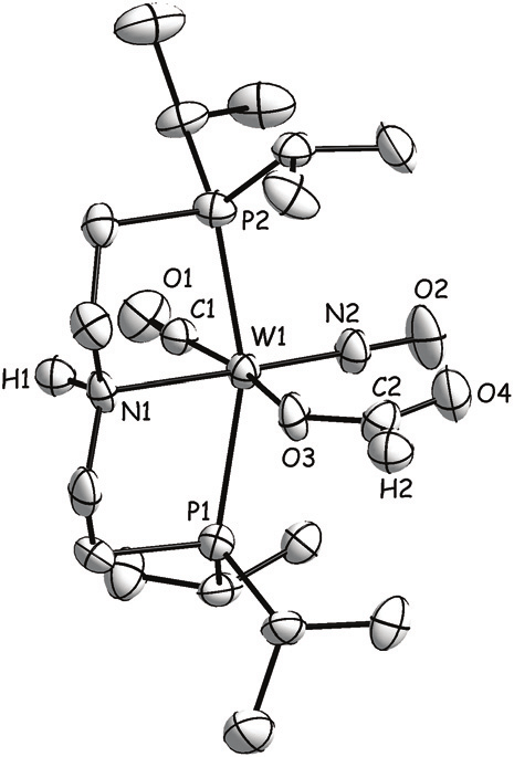 Molecular structure of 6b(cis). Thermal ellipsoids are
