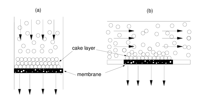 7 Schematic representation of (a) direct flow and (b