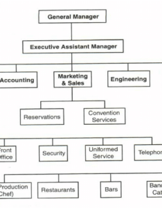 Typical hotel organization chart showing the gm   position and line staff source rutherford also rh researchgate