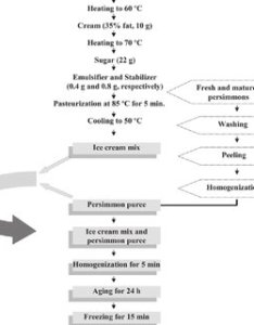 Process flowchart for the production of functional ice cream enriched with persimmon puree also rh researchgate