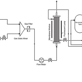 (PDF) Carbon Dioxide Biofixation using Microalgae in