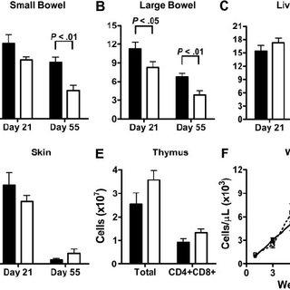Graft-versus-tumor effect of CCR2 ؊ / ؊ CD8 ؉ T cells is