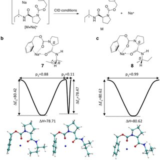 Derivatisation and ERMS analysis of dipeptide