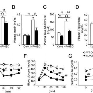 (PDF) Plasminogen Activator Inhibitor-1 Deficiency
