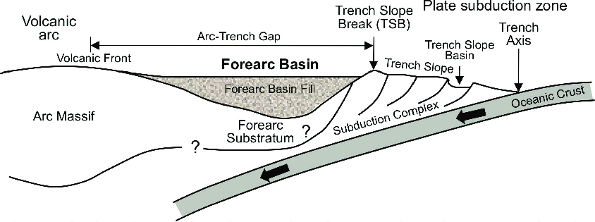 Schematic cross section of a forearc zone including a