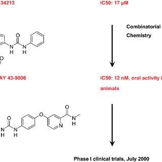 Model for the action of R-Ras3 (M-Ras) on Raf kinase