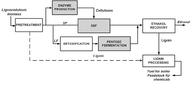 5 Schematic diagram of fuel ethanol production from