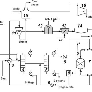 Schematic diagram of fuel ethanol production from
