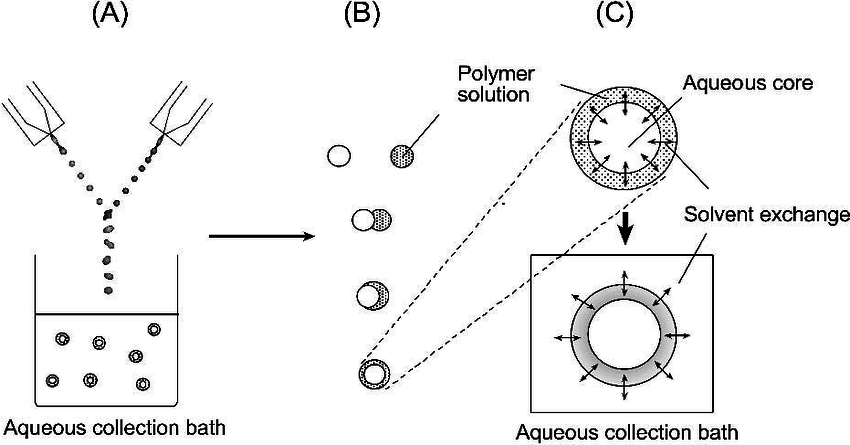 Formation of microcapsules by the solvent exchange method