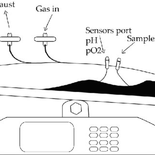 Schematic representation of a stainless steel stirred tank