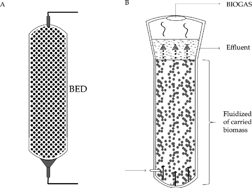 Microorganisms' retention reactors: (A) fixed-bed reactor