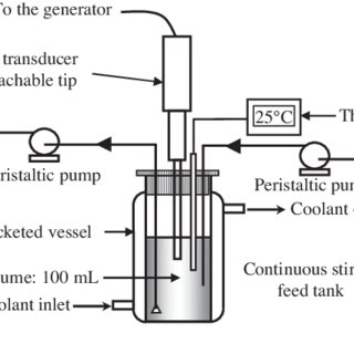 Scheme of the continuous flow ultrasonic reactor