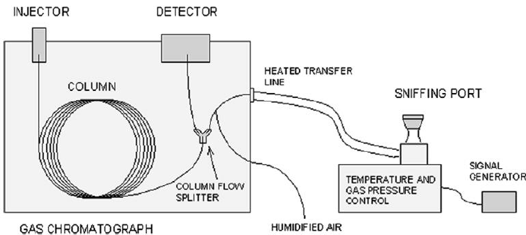 Scheme of the gas chromatograph equipped with an