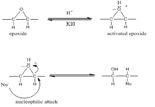 Activation of epoxide and ring-opened by nucleophilic in