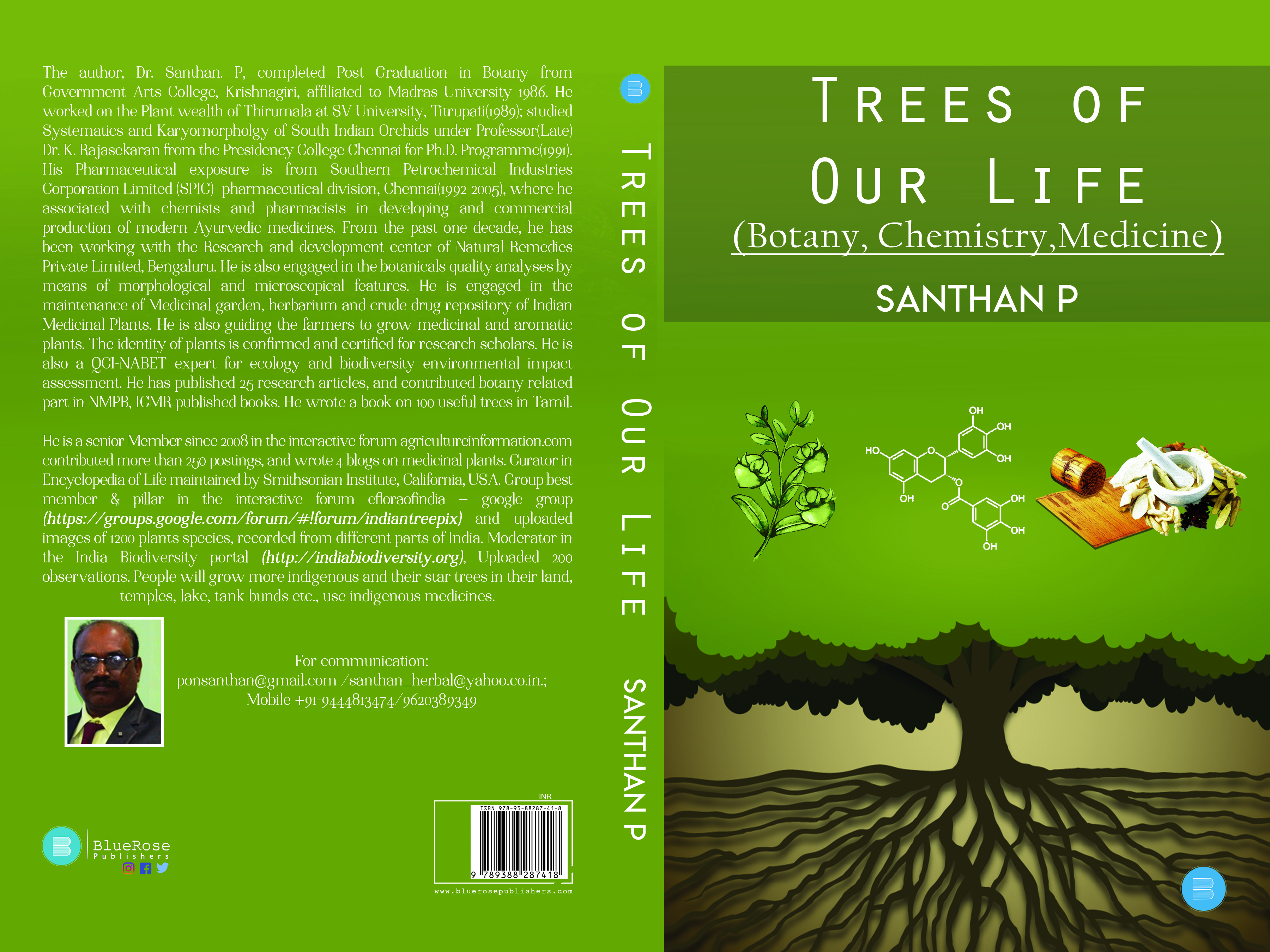 Importance Of Planting Trees Why Are Trees So Important