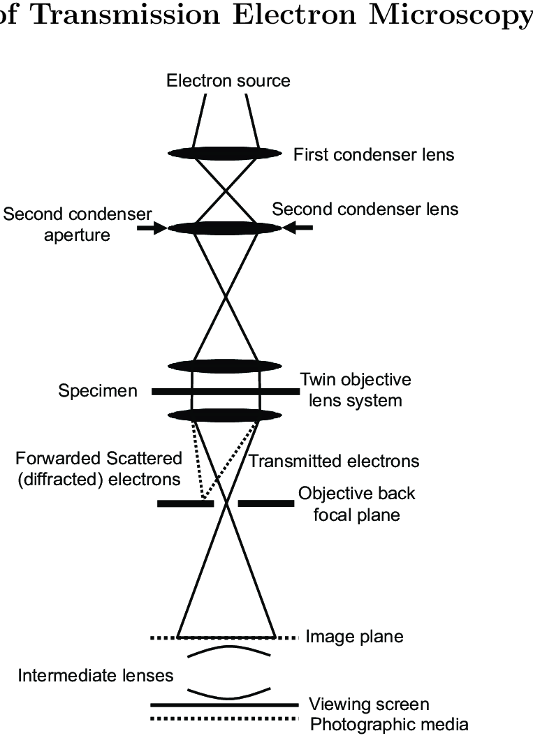 hight resolution of 9 a schematic diagram of the transmission electron microscope