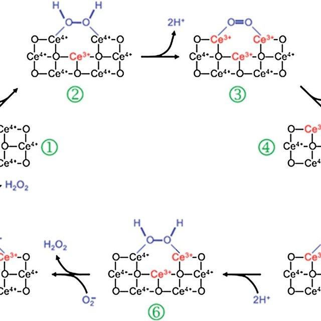 3 Schematic representation of melamine detection strategy