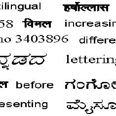 Sample input document containing Kannada, Hindi, English