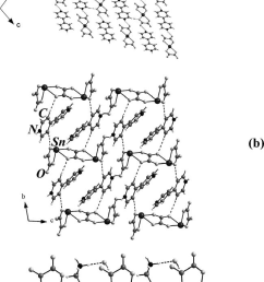 the packing diagram showing the arrangement of sn ii oxalate and the amine molecules in  [ 650 x 1303 Pixel ]