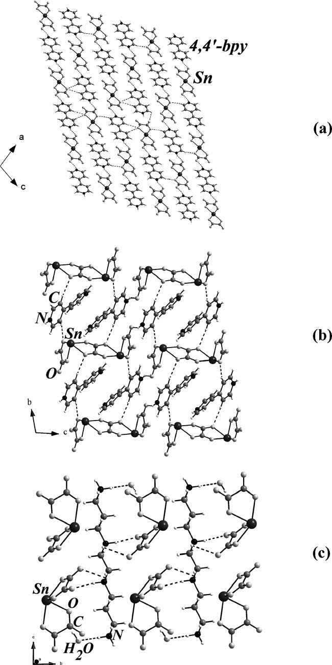 hight resolution of the packing diagram showing the arrangement of sn ii oxalate and the amine molecules in