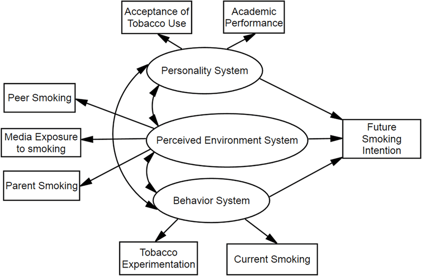 Hypothesized model for associations between problem