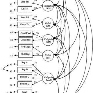 (PDF) Models of visuospatial and verbal memory across the
