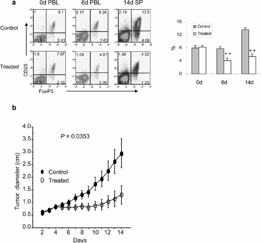 Anti B7 − 1/B7 − 2 mAbs treatments of mice bearing MC38
