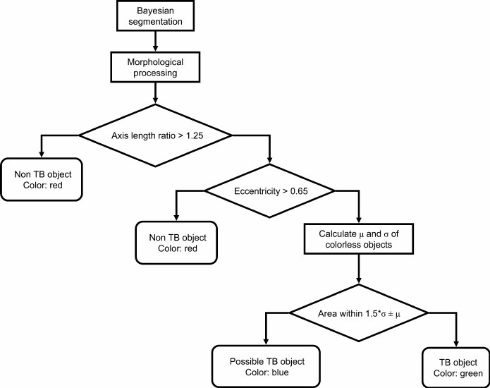 Flowchart showing the classification steps for automatic
