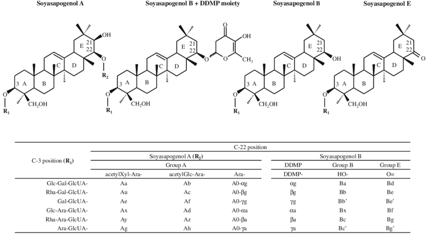 Chemical structure and nomenclature of soyasaponins. R 1