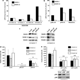 (PDF) p38alpha and p38delta mitogen-activated protein