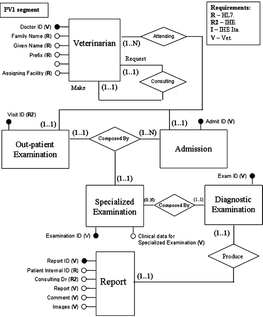 hight resolution of entity relationship model the veterinary electronic patient record