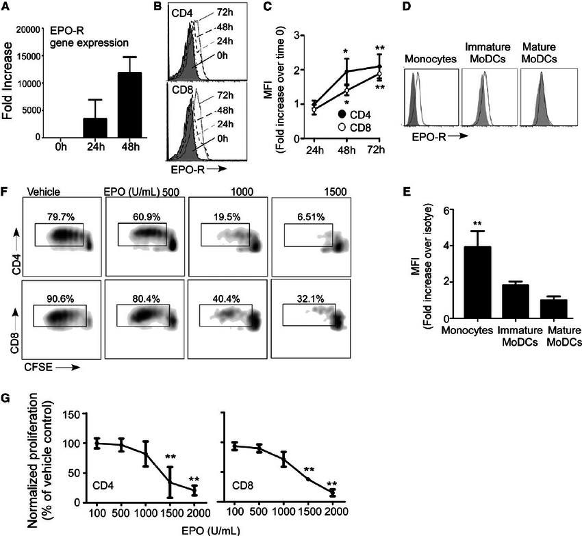 EPO inhibits T-cell expansion. (A) Kinetics of EPO-R gene