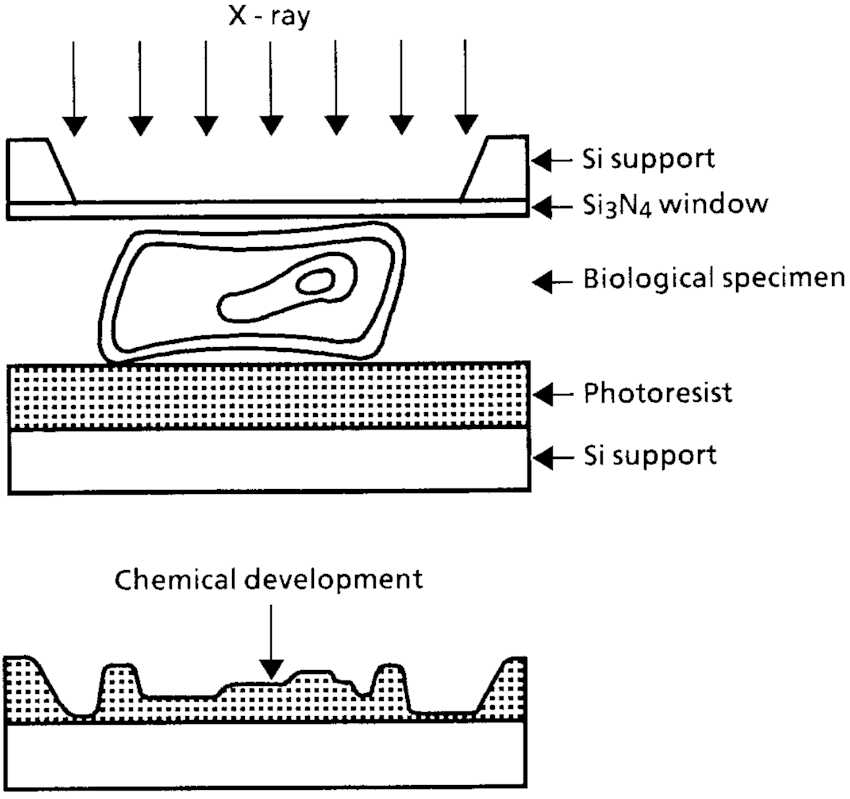 Schematic diagram showing the technique of soft x-ray