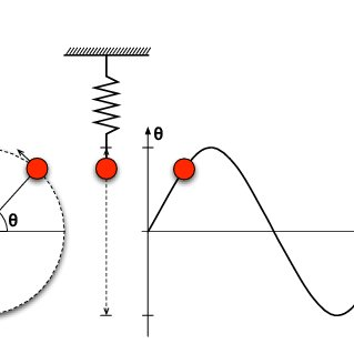 Periodic behaviour of the simple harmonic oscillator