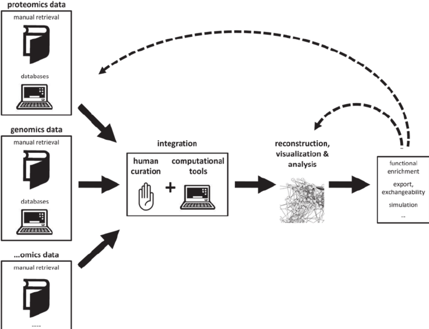 Schematic representation of the analysis workflow. From