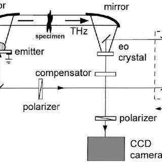 (PDF) Towards Brain Imaging using THz Technology