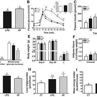 (PDF) Metabolic endotoxemia initiates obesity and insulin