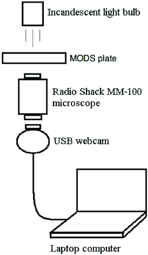 small resolution of schematic diagram of the prototype 1 system magnifier and digital camera prototype with output to