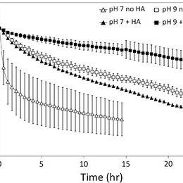 Hydrodynamic diameters of TiO 2 nanoparticle agglomerates