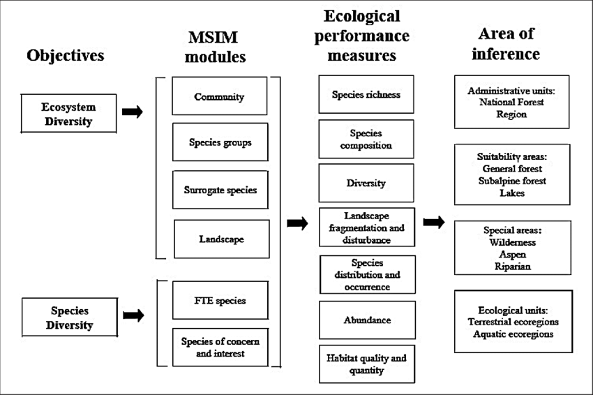 6. Example of an environmental management system model for
