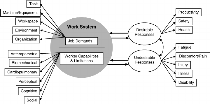 Conceptual model of ergonomics practice (adapted from