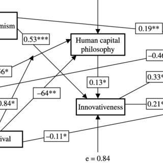 (PDF) The role of human capital philosophy in promoting