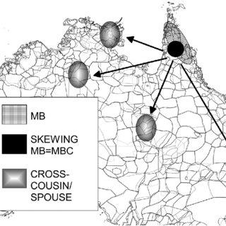 (PDF) Enhancing the Kinship Anthropology of Scheffler with
