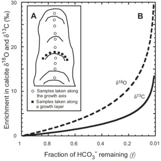 (PDF) Large kinetic isotope effects in modern speleothems