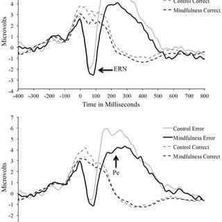 (PDF) The impact of a brief mindfulness meditation